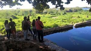"""""""Piscina natural"""" da Cacimba para projeto de filtro biológico"""