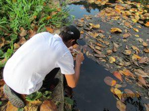 Coleta de água da Cacimba para análise bioquímica